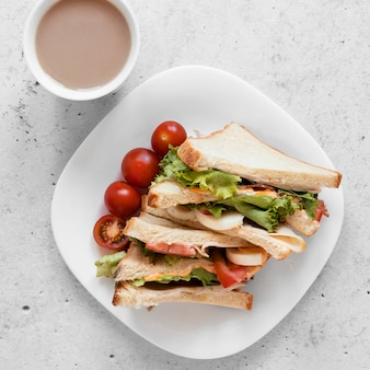 Flat lay delicious sandwiches assortment