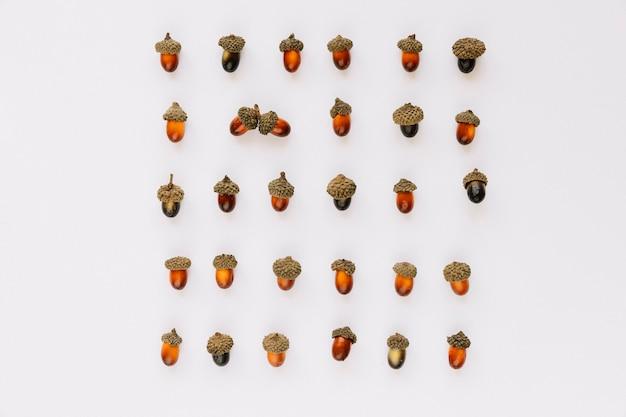 Flat lay of designed acorns square