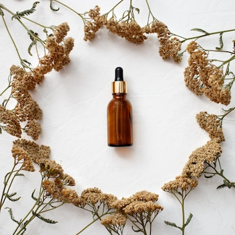 Flat lay of dropper glass bottle skincare essential oil products for mock up in minimal style with on white background.