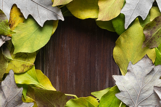 평평하고 마른 잎