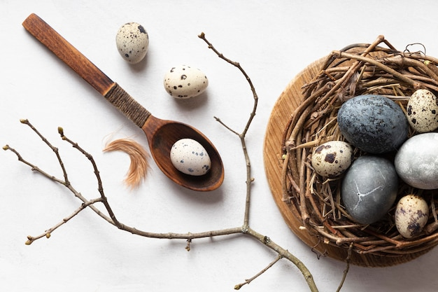 Flat lay of easter eggs in bird nest with wooden spoon and twig