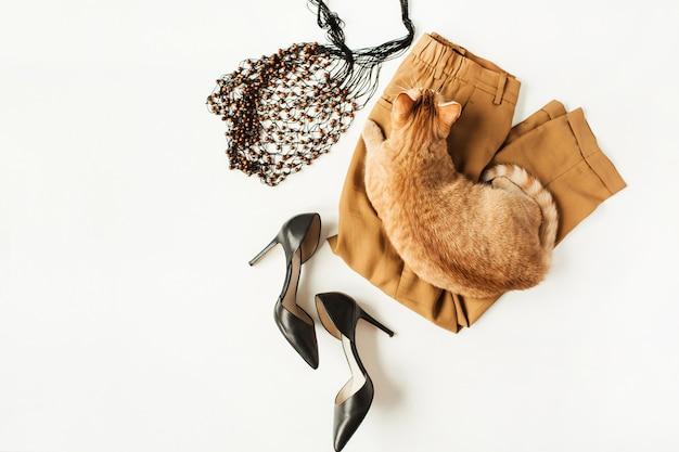 Плоский модный коллаж с современной женской одеждой, аксессуарами, рыжей кошкой на белой поверхности