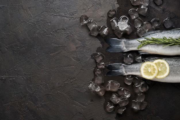 コピースペースのある角氷の上に平らに横たわる魚