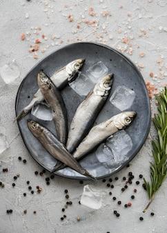 Плоская кладка рыбы на тарелку с кубиками льда