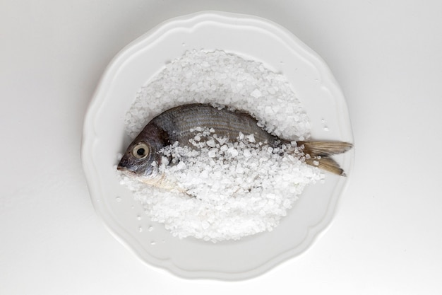Flat lay of fish on plate with salt