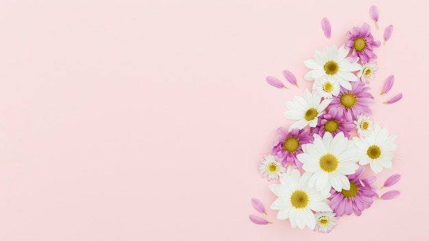 Flat lay floral frame on pink background