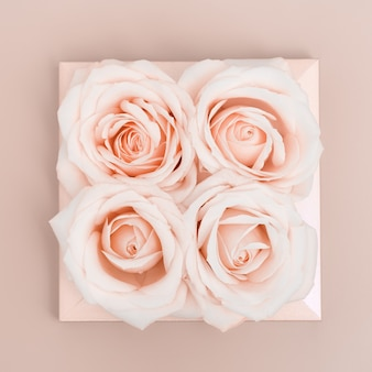 Flat lay floral pattern from pink white rose flowers pastel colored, creative layout, abstract environmental background.
