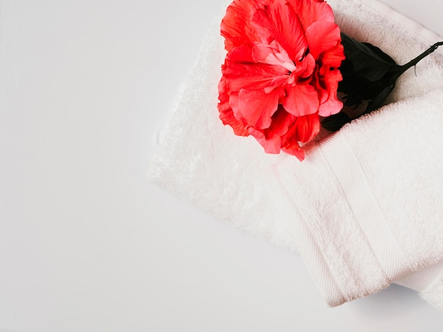 Flat lay flower on top of towels