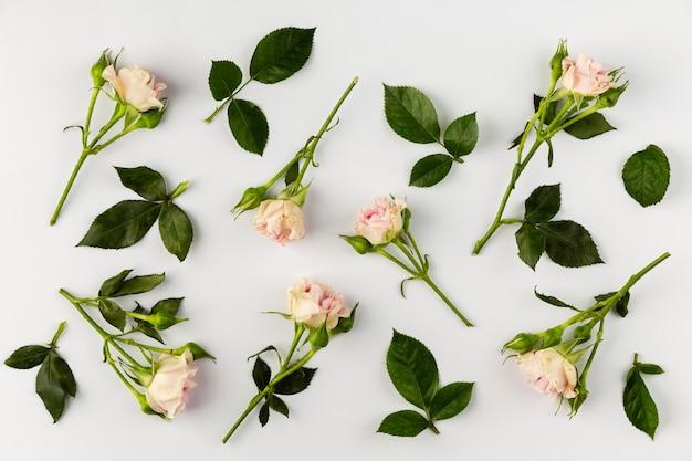 Raccolta di fiori piatti laici sul tavolo