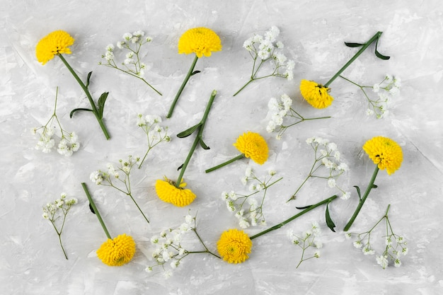 Flat lay flowers collection on table Free Photo