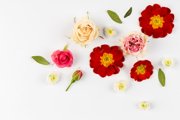 Flat lay flowers collection on table