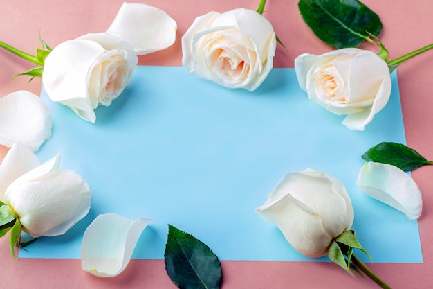 Flat lay flowers composition for your lettering. frame made of white rose flowers on blue background.