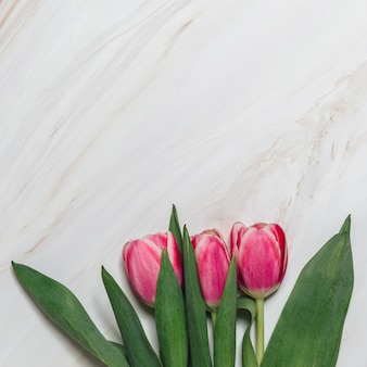 Flat lay of flowers with copyspace
