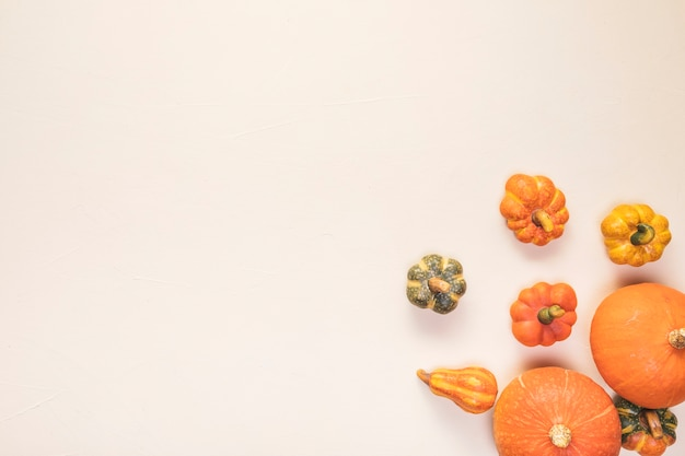 Flat lay food frame with pumpkins