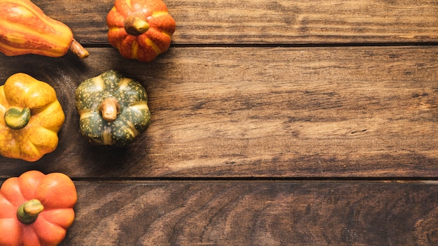 Flat lay food frame with small pumpkins