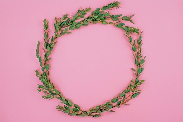 Плоские лежал кадр из листьев эвкалипта на розовом фоне. минимализм.