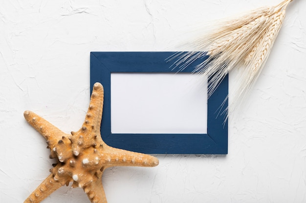Flat lay frame and starfish on table