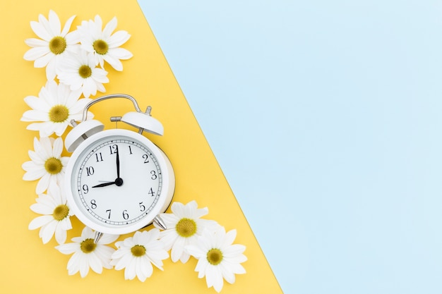 Flat lay frame with clock and daisies