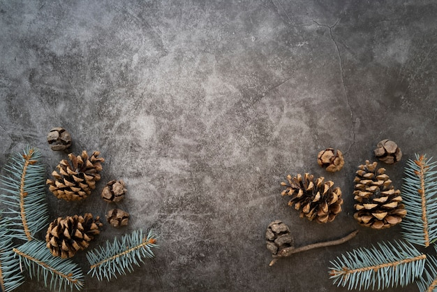 Flat lay frame with fir tree twigs and copy-space