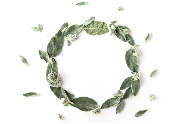 Flat lay of frame with green branches, leaves and petals isolated