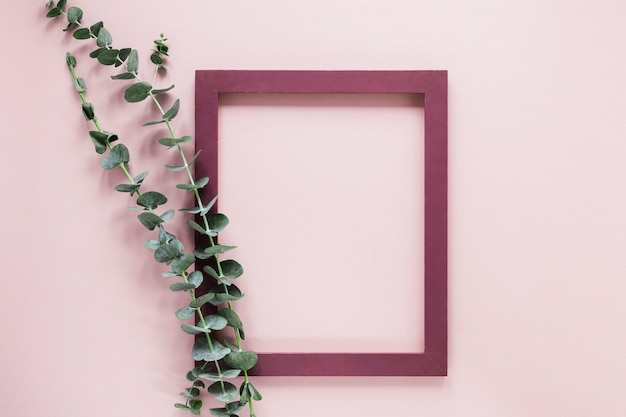 Flat lay of frame with leaves decoration