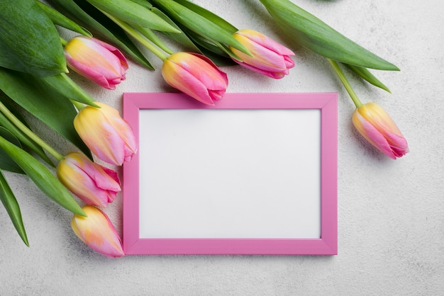 Flat lay frame with pink tulips
