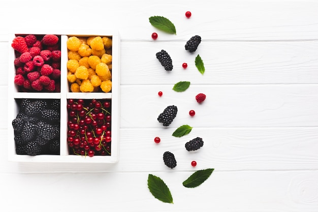 Flat-lay fresh berries and leaves and fruits with copy space