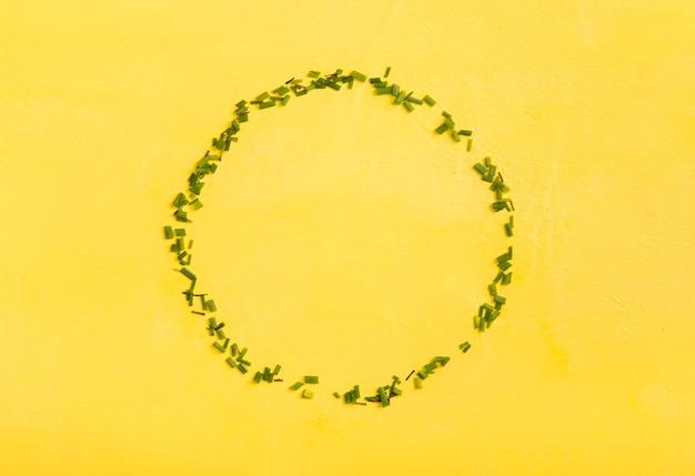 Плоская плоская рамка для свежего зеленого лука
