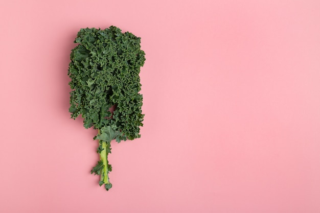 Flat lay fresh green kale on pink background
