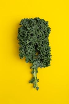 Flat lay fresh green kale on yellow background