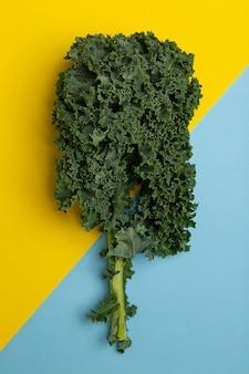 Flat lay fresh green kale
