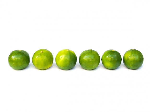Flat lay fresh green lemon lime citrus in row isolated on white space.