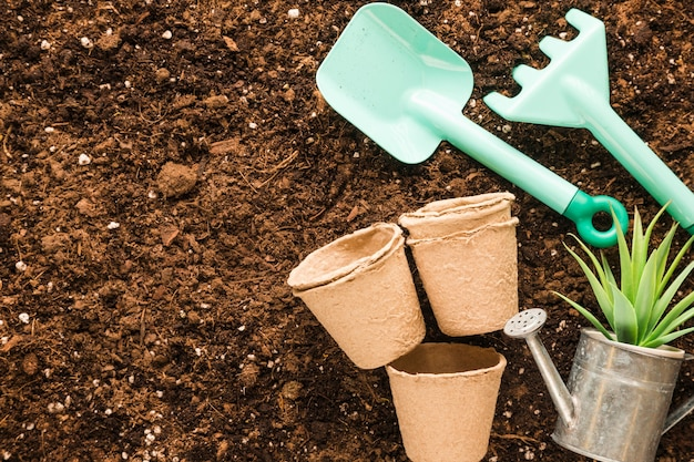 Flat lay of garden tools with copyspace