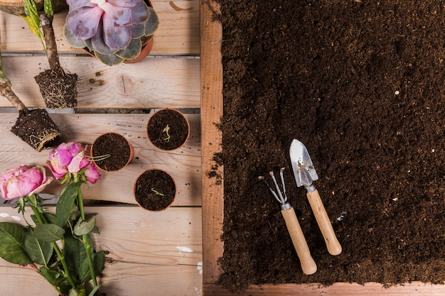 Flat lay gardening compositio