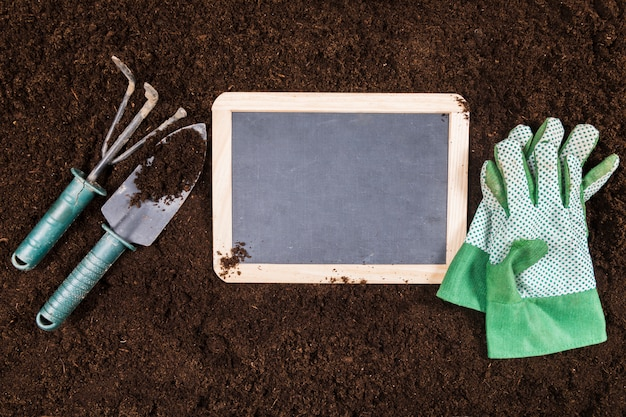 Flat lay gardening composition with slate template