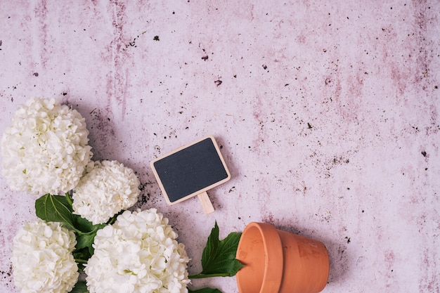 Flat lay gardening concept with copyspace