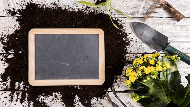 Flat lay gardening concept