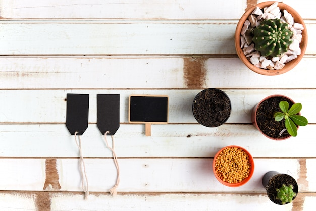 Flat lay gardening desk with cactus plants in pot and black paper label on vintage wood table,top view