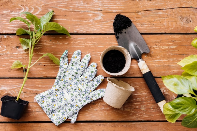 Flat lay gardening tools composition