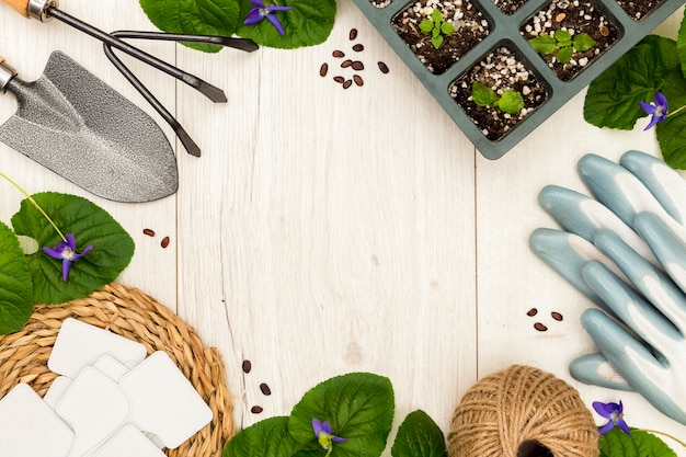 Flat lay gardening tools and plants frame with copy space