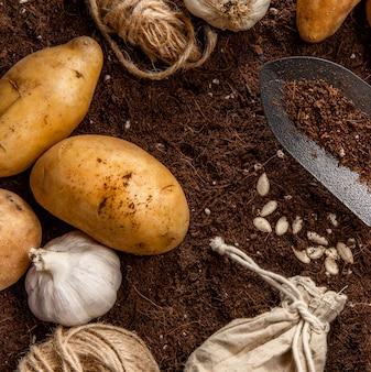 Flat lay of garlic and potatoes