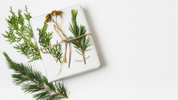 Flat lay of gift box with fern
