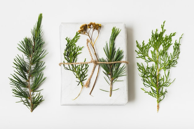 Flat lay of gift with string and fern