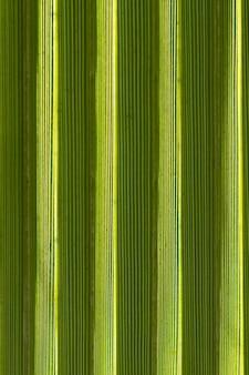 Superficie verde piatta