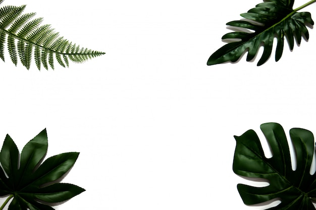 Flat lay of green tropical leaves on white background with copy space.