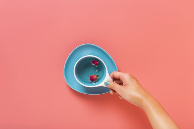 Flat lay of hand holding a cup with plain background