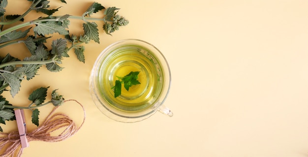 Flat lay herbal tea in a glass cup with fresh lemon balm. copy space