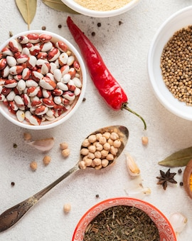 Disposizione del cibo indiano piatto