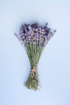 Flat lay lavender flowers in a bunch on a blue surface