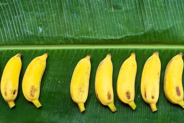 緑のバナナの葉に黄色のバナナのフラットレイアウト。エコフード